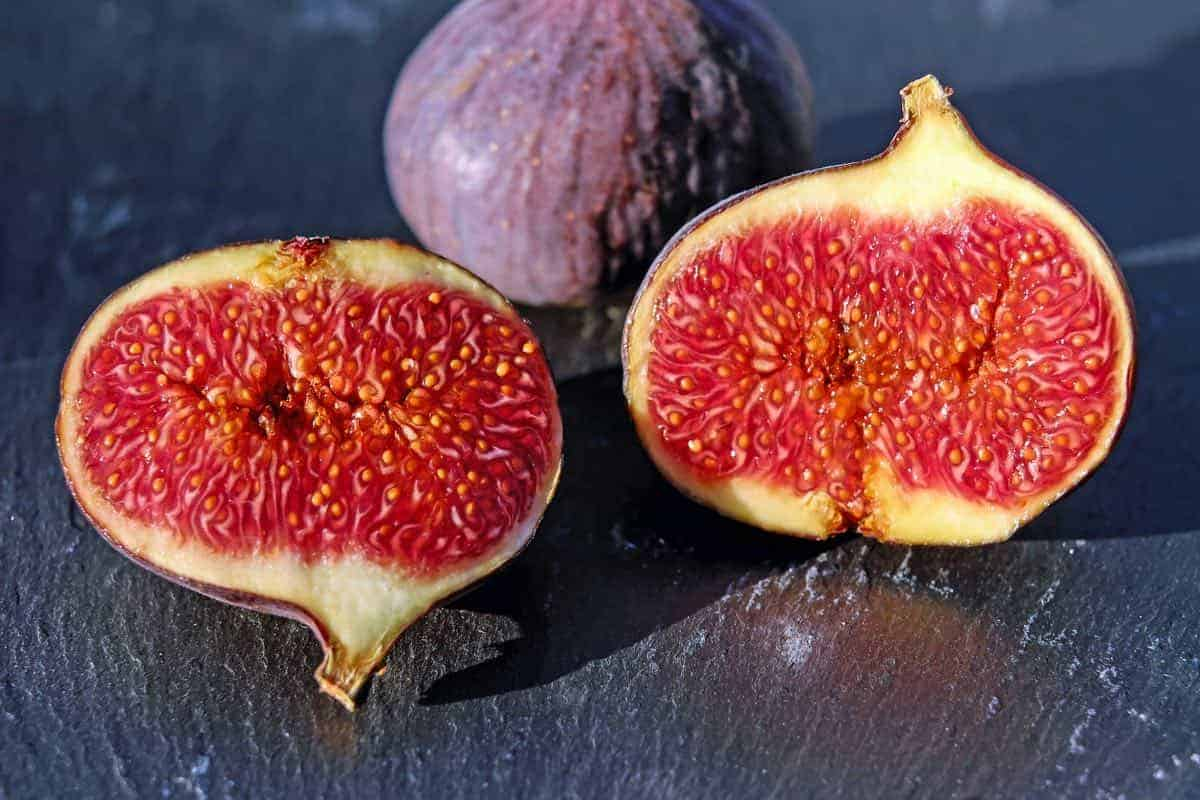 are figs safe for dogs