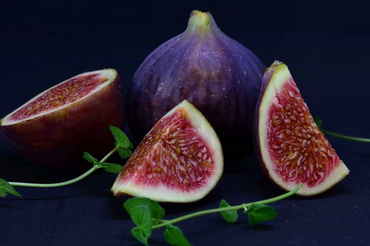 are fresh figs safe for dogs