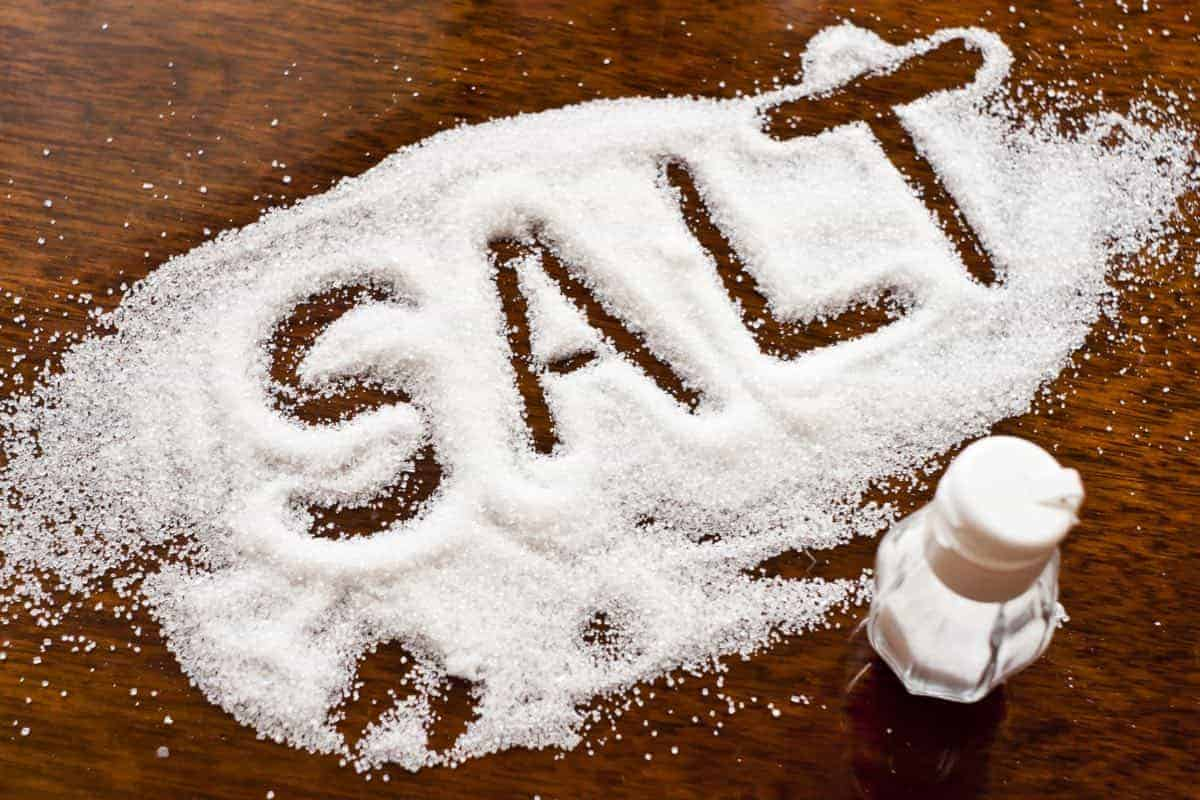 salt can be toxic to dogs