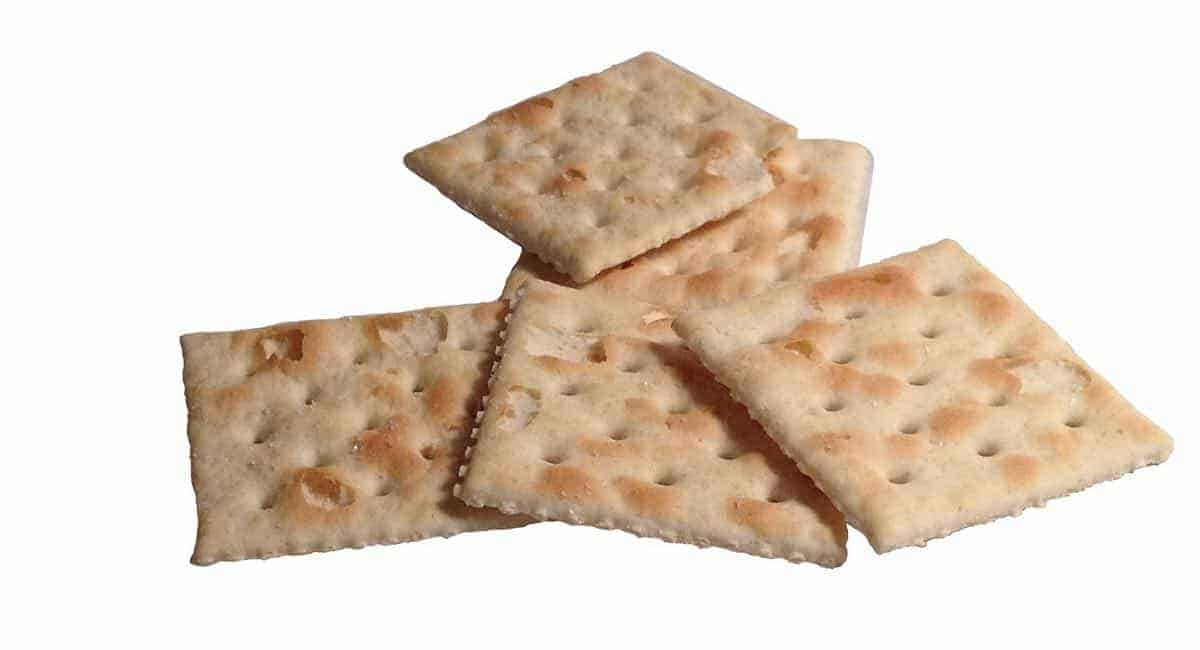 should dogs eat saltine crackers