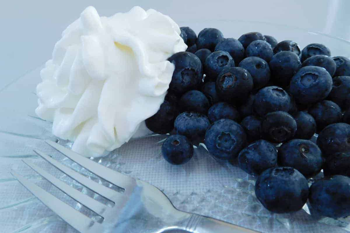 is it safe to give your dog whipping cream with blueberries?