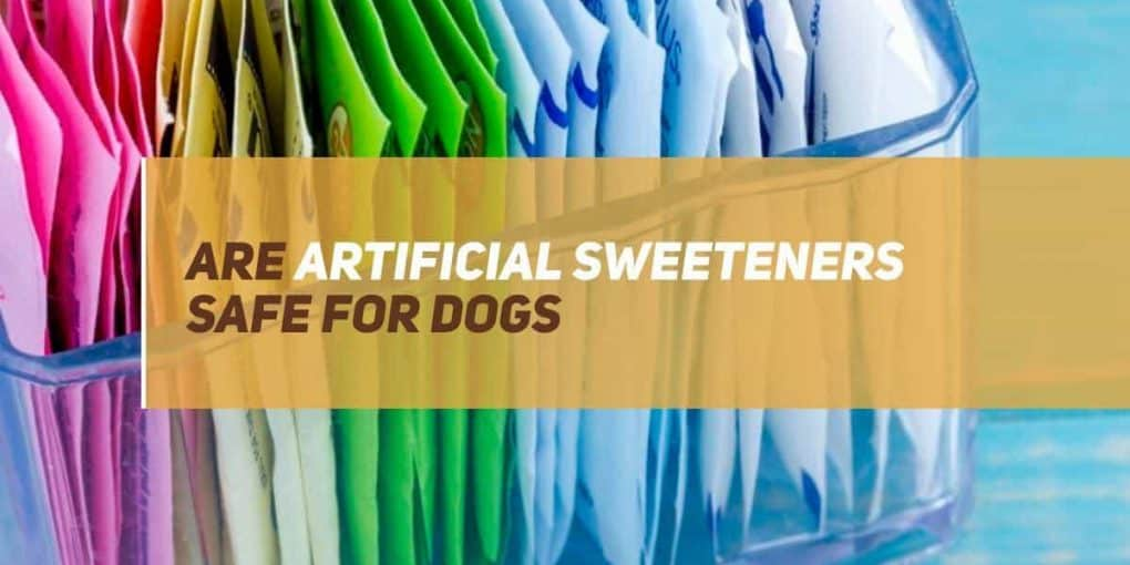 are artificial sweeteners safe for dogs