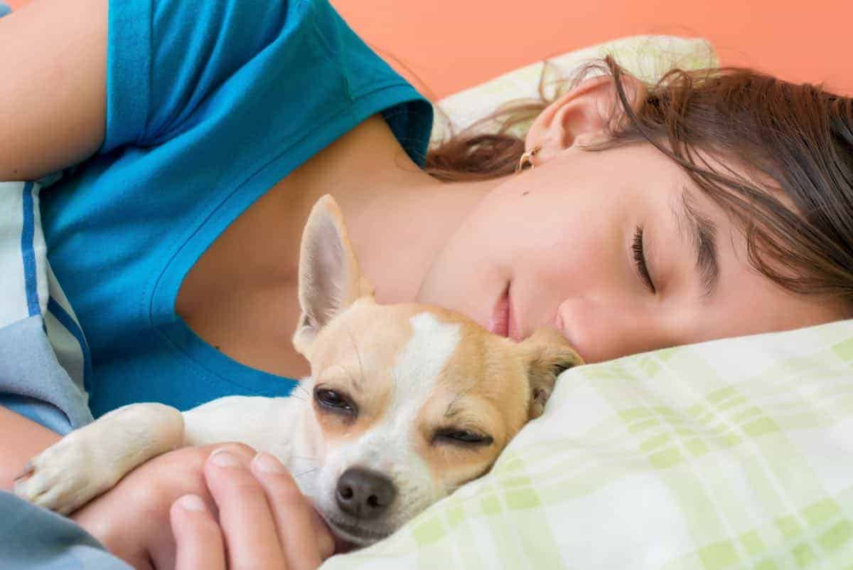 is it ok to cuddle with your dog