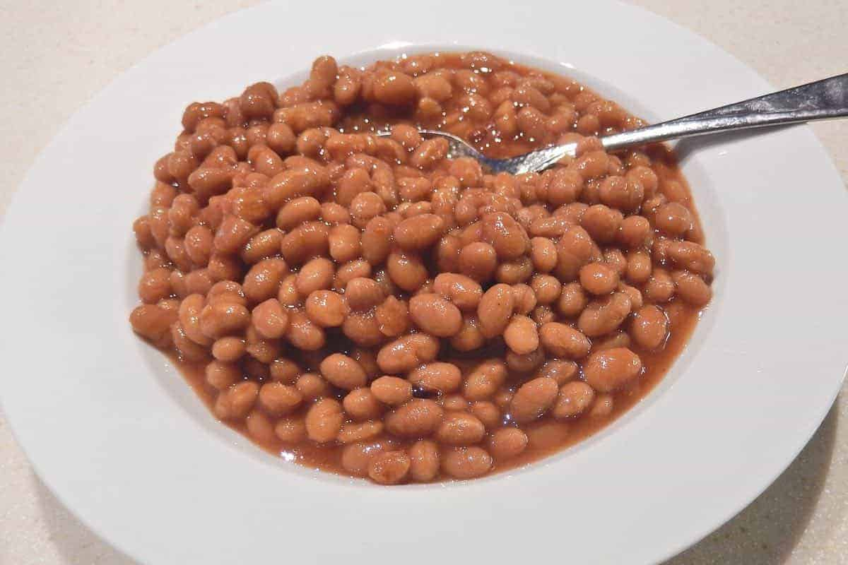 are baked beans healthy for dogs